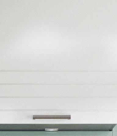 paula biała